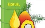 Presiden RI Terpilih Harus Percepat Program Biodiesel B100
