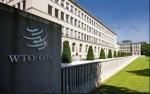 RI Sepakat Bawa Kebijakan Diskriminasi Sawit UE ke WTO