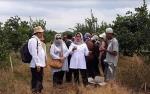 Potensi Buah Jeruk di Wilayah Basarang Akan Dikembangkan