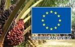 JAPBUSI Dukung RI Lawan Diskriminasi UE Terhadap Sawit