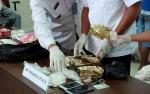 BNNP Buru Dua Orang Jaringan Pembawa 500 Gram Sabu