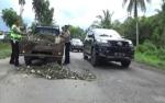 Anggota Polres Kapuas Tambal Jalan Rusak Kurangi Resiko Kecelakaan di Jalan Trans Kalimantan