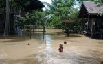 Banjir Rendam 3 Kecamatan di Pulang Pisau