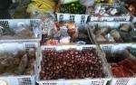 Harga Bawang di Kasongan Melonjak Jelang Puasa