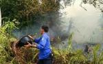 Ada 10 Kebakaran Lahan di Kotawaringin Timurhingga Mei 2019