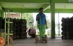 Gas Elpiji Subsidi Hanya untuk Masyarakat Miskin