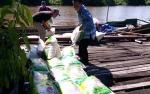 Zakat Beras H Abdul Rasyid AS Menyasar 42 Desa di Pulang Pisau dan Kapuas