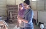 Memasuki Pancaroba, Ternak Ayam Rentan Terserang Penyakit