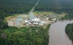 Austindo Rampungkan 2 Pabrik Pengolahan di Papua dan Jatim