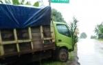 Truk Mundur di Jalan Menanjak Tabrak Mobil Minibus