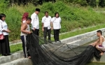 Diskan Sukamara Bekerja sama dengan Nelayan Kembangkan Ikan Kelabau