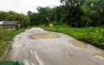 Warga Keluhkan Jalan Rusak Menuju Desa Trahean