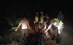 Kendarai Motor Dalam Keadaan Mabuk, Dua Pria Ini Tewas Tabrak Pohon