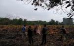 BPBD Palangka Raya Duga Kebakaran Lahan di Palangka Raya Karena Kesengajaan
