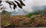 Polisi Olah TKP di Lahan Terbakar Km 9 Palangka Raya