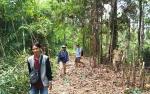 Pemerintah Desa Teluk Malewai Bangun Jalan Baru demi Perluas Pemukiman