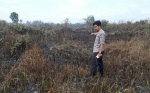 Polisi Tangkap Pembakar Lahan di Desa Handil Sohor