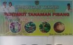 Dinas Pertanian Seruyan Gelar Bimtek Pengendalian Penyakit Pisang