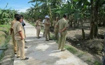 Desa Bangun Harja Fokus Bangun Jalan Lingkungan