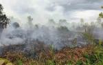 Polres Kotawaringin Timur Akan Tindak Tegas Pelaku Pembakar Hutan dan Lahan