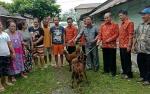 DPRD Gunung Mas Harapkan Bantuan Bibit Ternak Bisa Dikembangbiakan