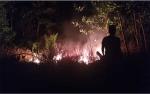 Lahan di Jalan Soekarno Terbakar