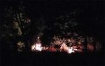 Polda Kalimantan Tengah Tegas Terhadap Pembakar Lahan