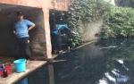 Legislator Wanti-wanti Dinas Lingkungan Hidup Kotawaringin Timur Soal Penanganan Limbah Sawit