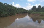 Sungai Tercemar Harus Direhabilitasi untuk Jaga Ekosistem
