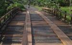 Dinas PUPR Pulang Pisau Lakukan Pemeliharaan 50 Jembatan Kayu