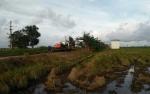 DPRD Seruyan: Pengembangan Komoditas Bisa Memambah Nilai Ekonomi Petani