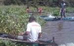 Eceng Gondok Ganggu Aktivitas Warga di Sungai