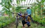 Lahan Pertanian di Desa Eka BahuruiJadi DestinasiWisata Baru di Kotim