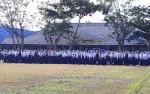 9 Siswa Baru di SMK Negeri 1 Kuala Kapuas Diterima Lewat Jalur Prestasi