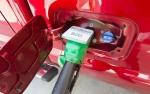 Serapan Biodiesel B20 Domestik Capai 2,8 Juta Ton