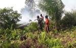 Karhutla di Pulang Pisau Banyak Terjadi di Wilayah Gambut Dalam