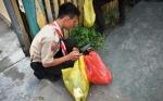SOPD hingga Kelurahan Diminta Jaga Kebersihan Lingkungan