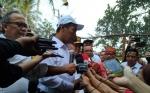 Menteri Pertanian Klaim Bibit Unggul Naikkan Hasil Produksi hingga 400 Persen
