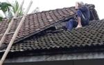 Slamet Kembali Berulah, Hebohkan Warga Desa Kumpai Batu Atas dengan Naik Atap Rumah
