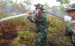 TNI BersamaTim Gabungan Berjibaku Padamkan Karhutla di Tanjung Taruna