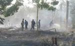 Legislator Minta Polisi Tegas Tindak Pembakar Lahan