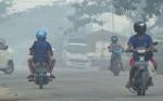Ini Kata Bupati Kotawaringin Timur terkait Kabut Asap mulai Selimuti Sampit