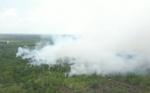 4 Hektare Lahan Gambut di Desa Eka Bahurui Terbakar