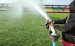 Jelang Laga Kandang Rumput Stadion Tuah Pahoe Terus Dirawat