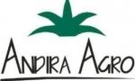 Meski Penjualan Turun, Laba Andira Agro Naik Semester I/2019