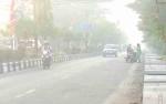 Kebakaran Lahan Besar akan Berdampak terhadap Transportasi di Kotawaringin Timur