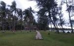 Pengembangan Objek Wisata di Seruyan Harus Lebih Fokus