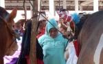 Pemkab Kotawaringin Barat Gelar Pasar Ternak Kurban