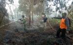 Koramil Temukan Sekitar 10 Hotspot Penyebab Karhutla di Kecamatan Kumai