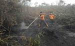 Kebakaran Lahan di Kotawaringin Timur Mulai Berkurang